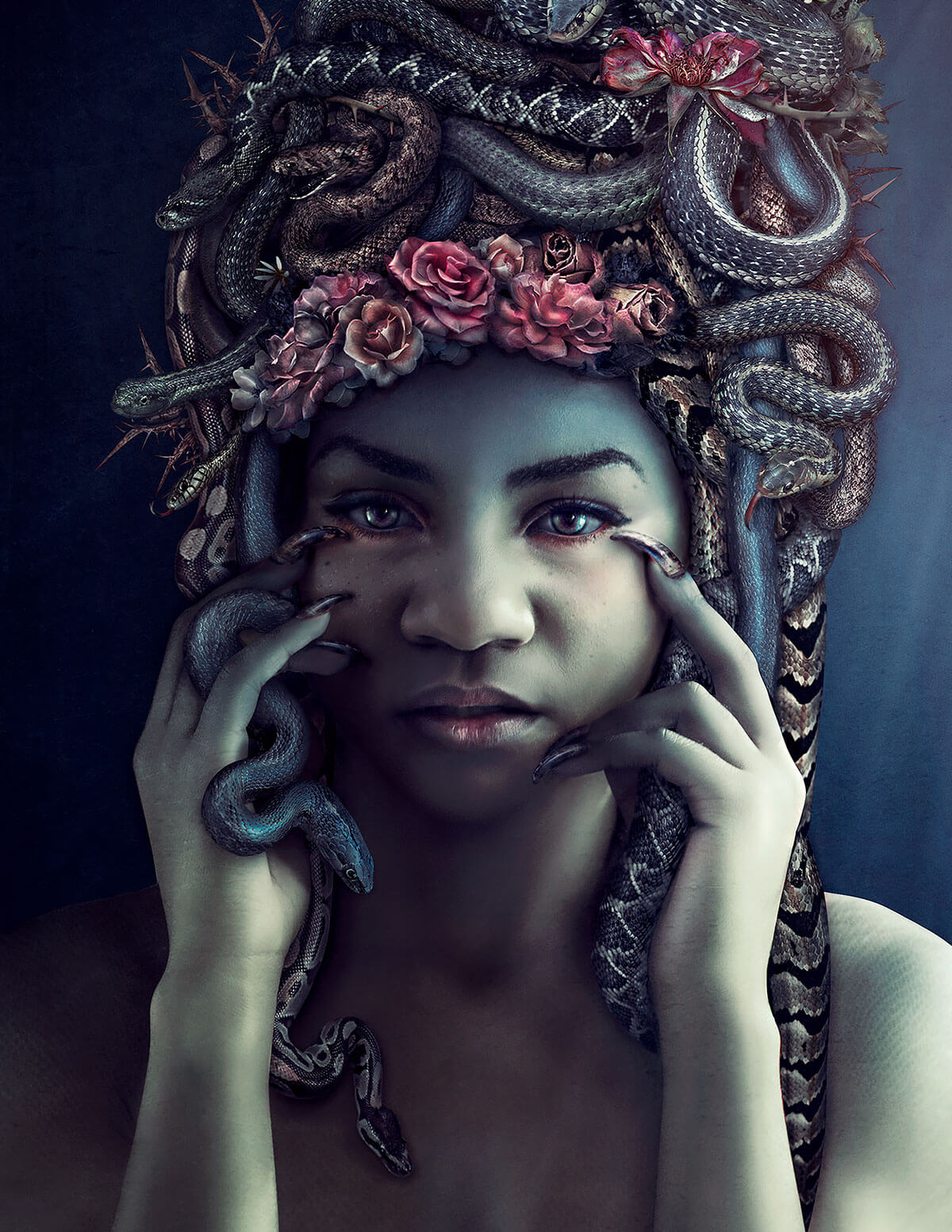 medusa-cropped_retina-compressed