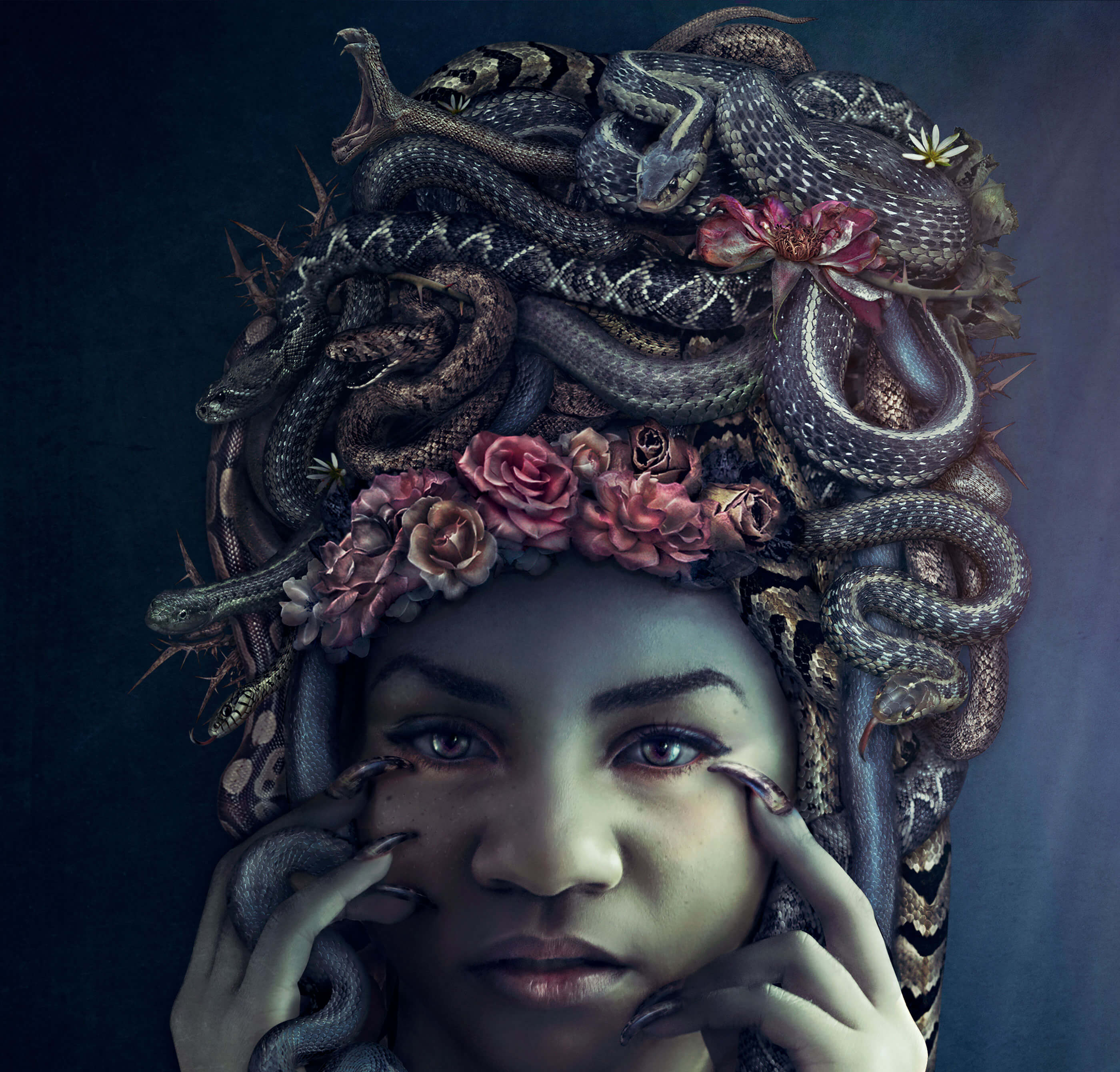 medusa-detail_retina-compressed